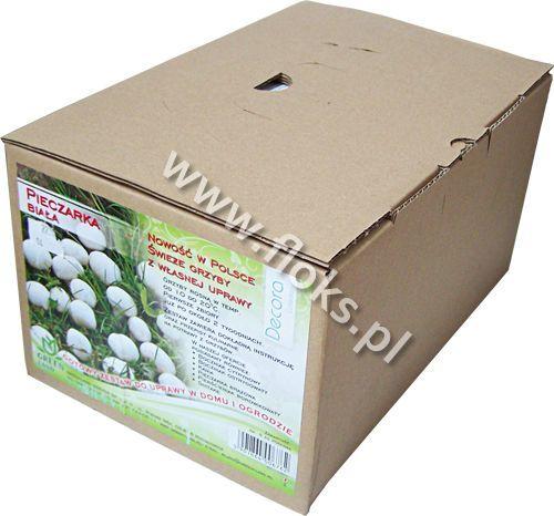 Grzyby gotowa grzybnia Pieczarka biała 5kg Green-land