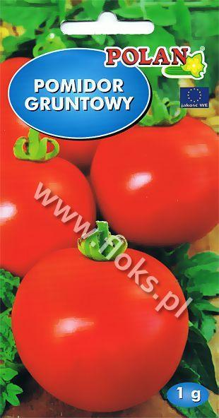 Pomidor Sabała 1g Polan